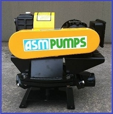 ASM PUMPS - DIAPHRAGM
